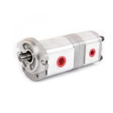HGP-33A Belize France Series Gear Pump