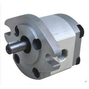 HGP-1A Tunisia India Series Gear Pump