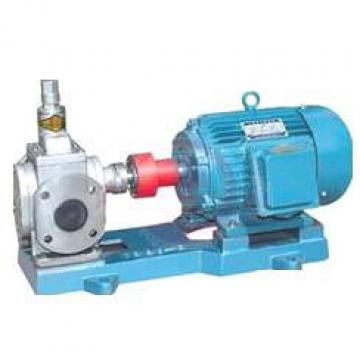 YCB Latvia  USA Series Arc Gear Pumps