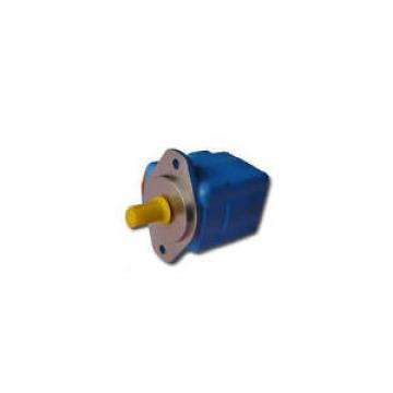 25V-21A-1D-22R Egypt  origin vickers pump