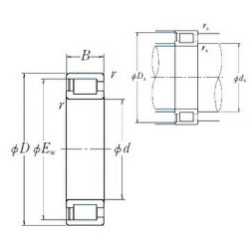 Cylindrical Roller Bearings NCF29/500V NSK