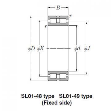 Bearing SL01-4876