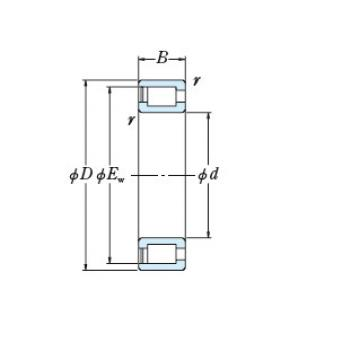Full NSK cylindrical roller bearing RS-5038
