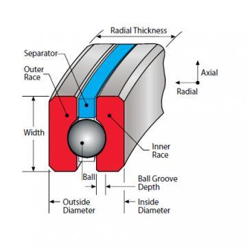 Kaydon Thin Section Bearing NF110CP0