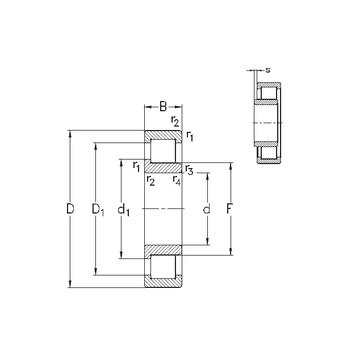 NJ319-E-MA6 NKE Cylindrical Roller Bearings