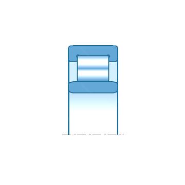 NU2211EG15 SNR Cylindrical Roller Bearings