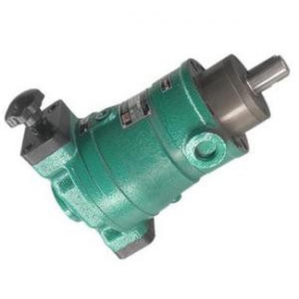 SCY14-1B axial plunger pump #1 image