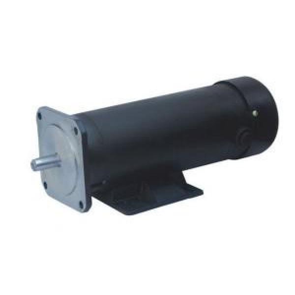 123ZYT SaoTomeandPrincipe Series Electric DC Motor 123ZYT-220-1000-1700 #1 image
