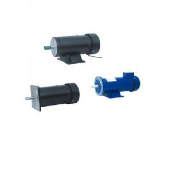 113ZYT Syria Series Electric DC Motor #1 image