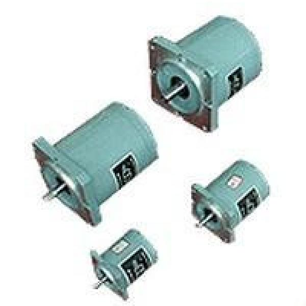 TDY SouthAfrica series 110TDY115-2  permanent magnet low speed synchronous motor #1 image