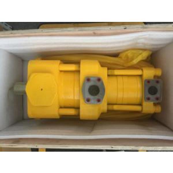 Sumitomo QT6253-125-50F Double Gear Pump #1 image