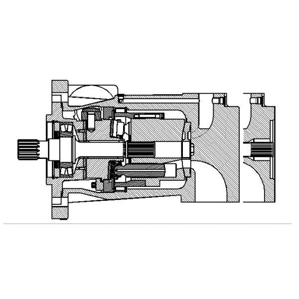 Dansion Ukraine P080 series pump P080-06R1C-L5P-00 #1 image