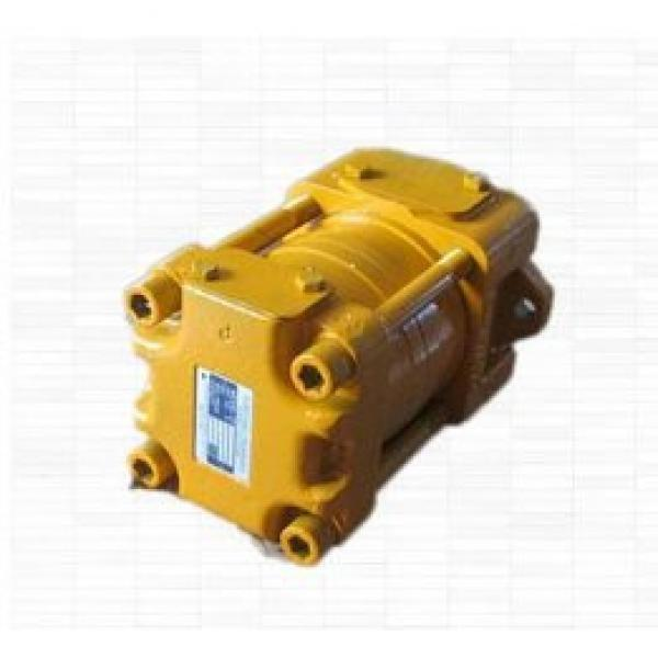 SUMITOMO origin Japan SPRG-03-250-13 SD Series Gear Pump #1 image