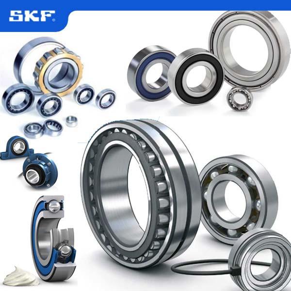 SKF Distributor Supplier in Singapore Original import