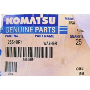 Komatsu, Moldova, Republic of  3/4 WASHER, FLAT, 25548R1 (Box of 25) NEW! SAVE $31.75