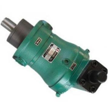 80YCY14-1B  high pressure piston pump
