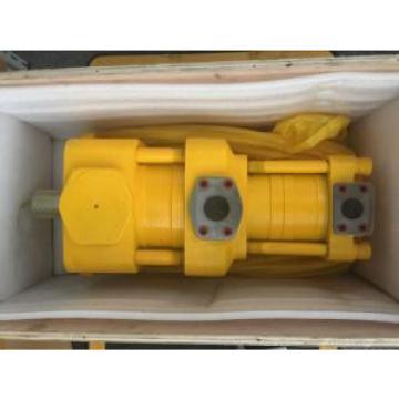 Sumitomo QT6123-250-6.3F Double Gear Pump