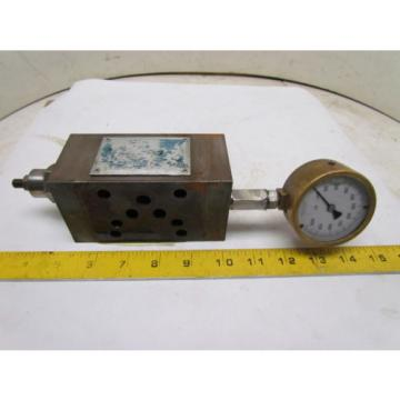 Vickers Guinea  DGMX2-5-PP-BW-5-30 Hydraulic Pressure Reducing Valve W/Gauge