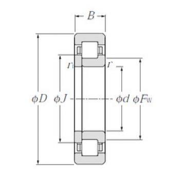 Bearing NUP2204E CYSD