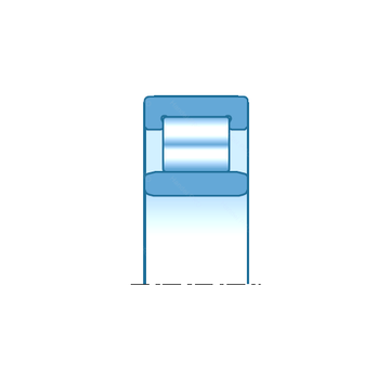 NU19/530 NTN Cylindrical Roller Bearings