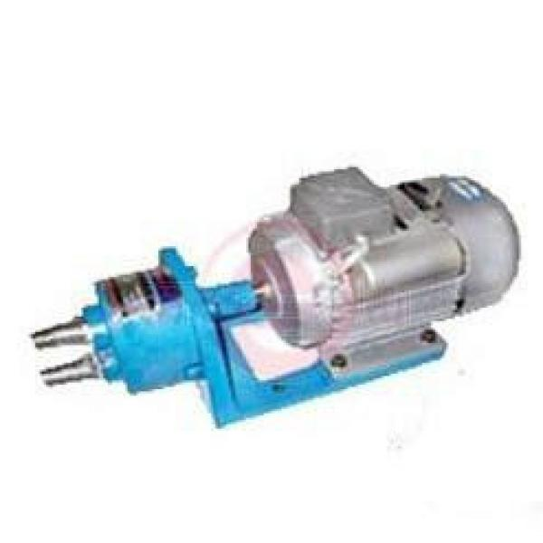 WCB-S Albania  Germany Series Gear Pumps #1 image