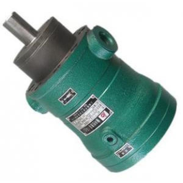 MCY14-1B fixed displacement piston pump #1 image
