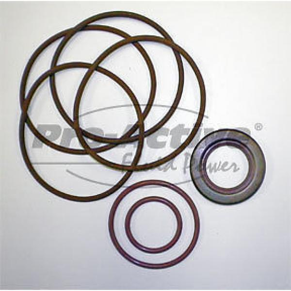 Vickers Guyana  V2200 Vane Pump   Hydraulic Seal Kit  919295 #1 image
