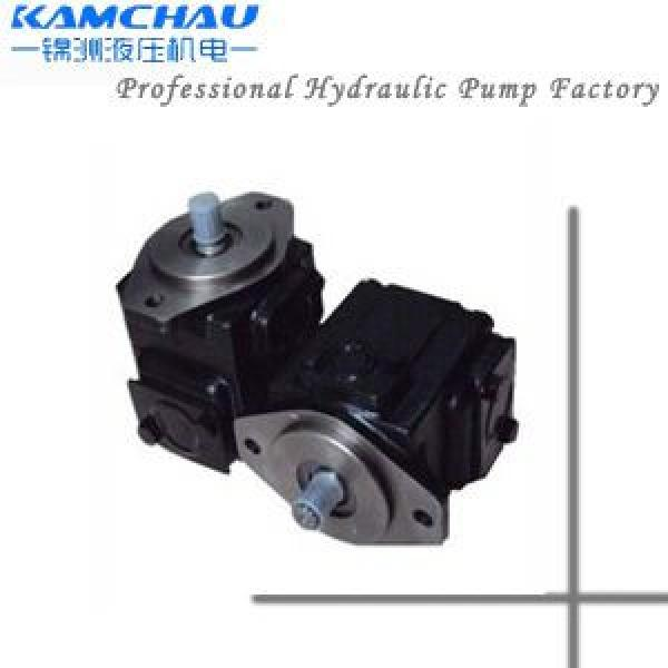 Hydraulic  6C T6D T6E T7E Single Vane Pump T6DCC0420220102R02A100 #1 image